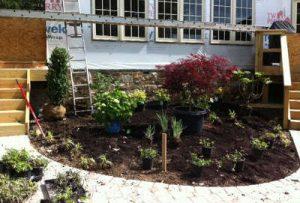 Landscape maintenance planting