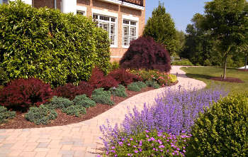 6 Little Secrets to Choosing a Top Landscape Maintenance Service